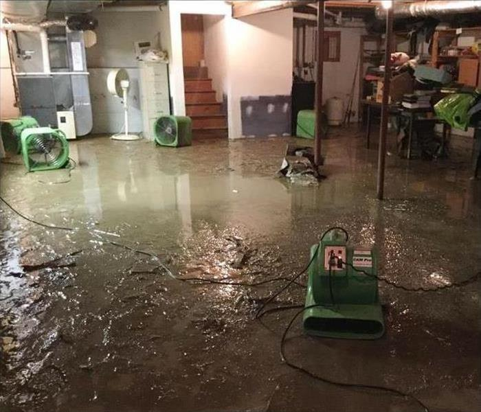 sewage in basement