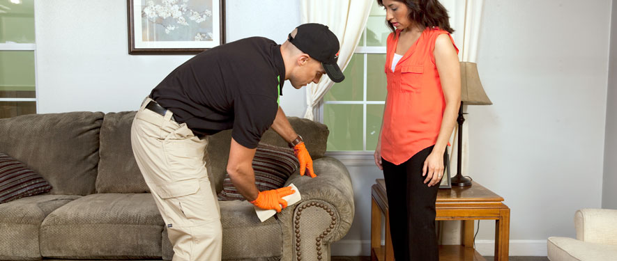 Albert Lea, IA carpet upholstery cleaning