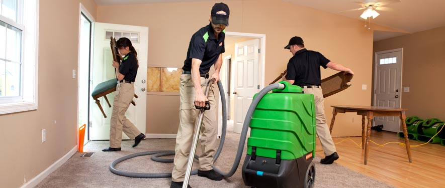 Albert Lea, IA cleaning services